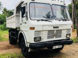 Tata tipper 1615 commins 2003 Lorry