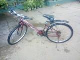 Jaguar Sports Gear Bicycle  Push Cycle