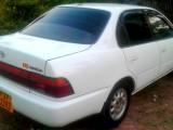 Toyota Corolla (EE101) 1991 Car