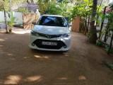 Toyota axio 2017 Car