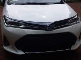 Toyota Axio Wxb 2019 2019 Car