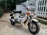Honda honda chally cf70 2014 Motorcycle