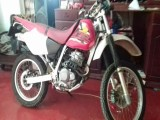 Honda xr 250 2011 Motorcycle